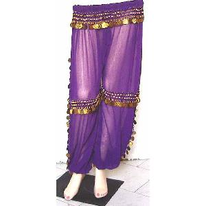 Belly Dancer Harem Pant Purple B Image